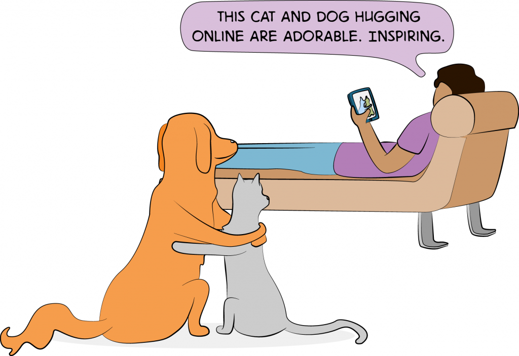 adorable cats and dogs comic